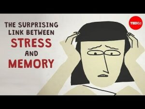The surprising link between stress and memory